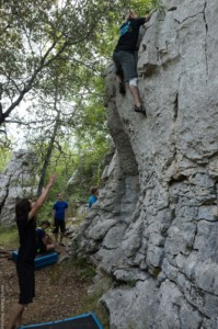 Bacogrimp - Ardeche 19-0003428